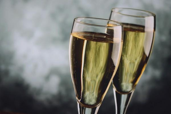 champagne-cat